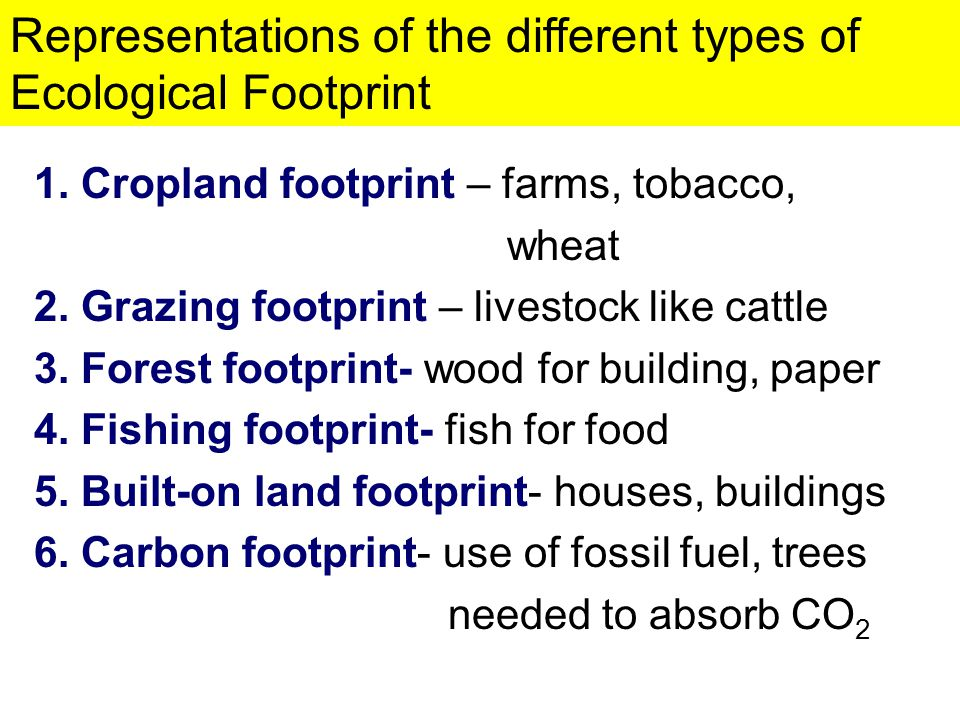 Representations of the different types of Ecological Footprint