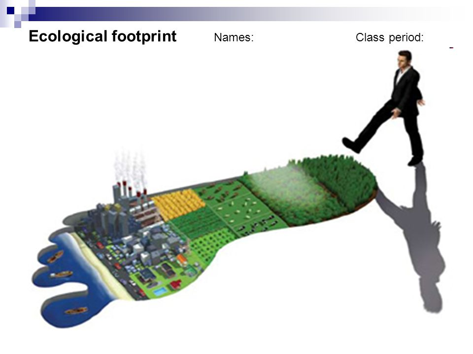 Ecological footprint Names: Class period: