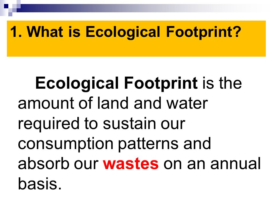 1. What is Ecological Footprint