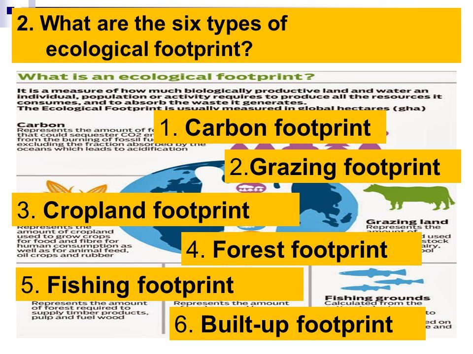 1. Carbon footprint 2.Grazing footprint 3. Cropland footprint