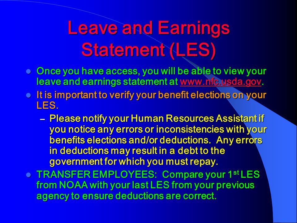 Leave and Earnings Statement (LES)