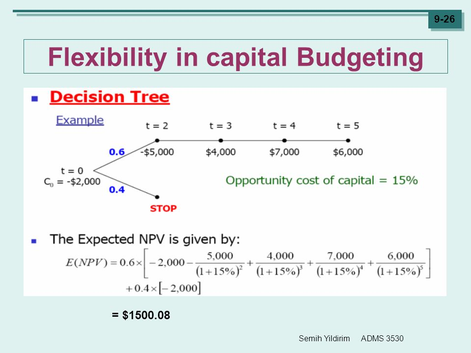 Flexibility in capital Budgeting