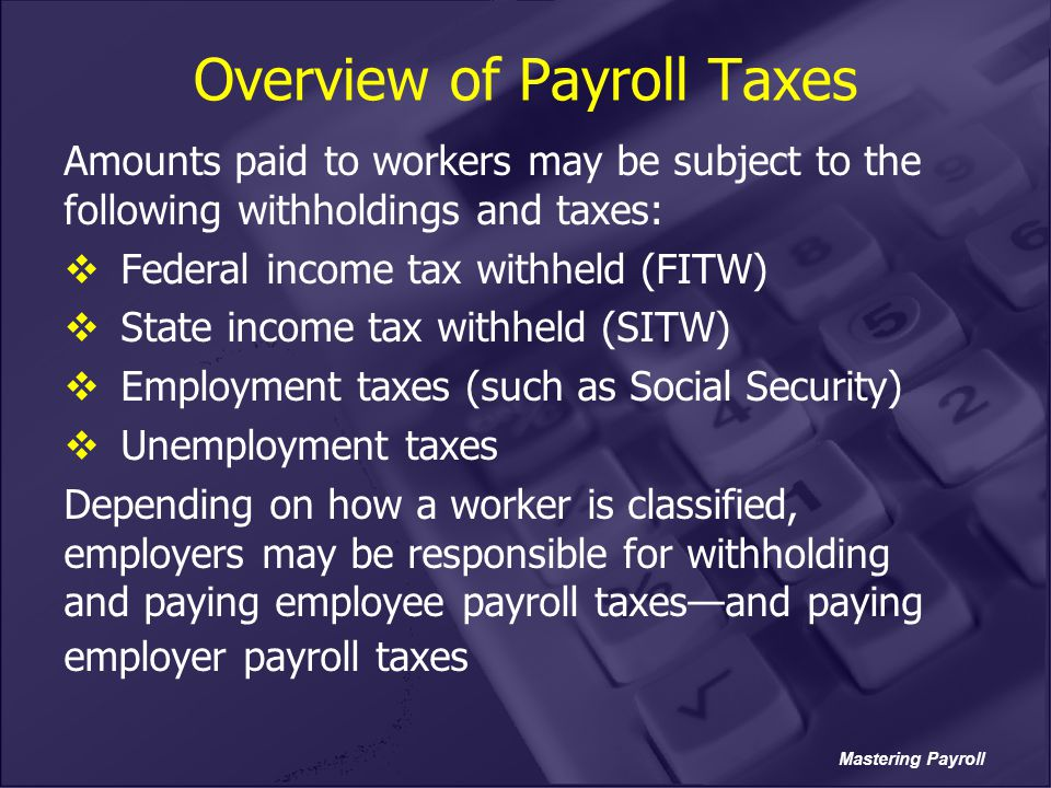 Overview of Payroll Taxes