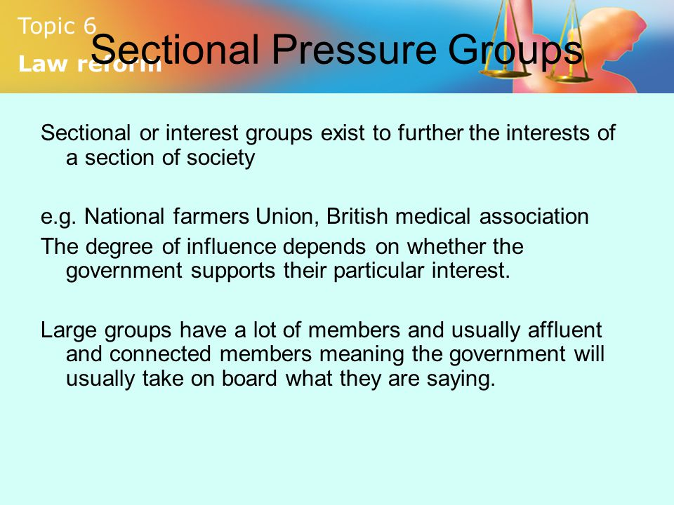 Sectional Pressure Groups
