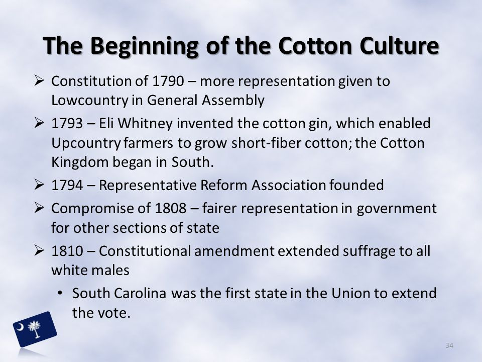The Beginning of the Cotton Culture