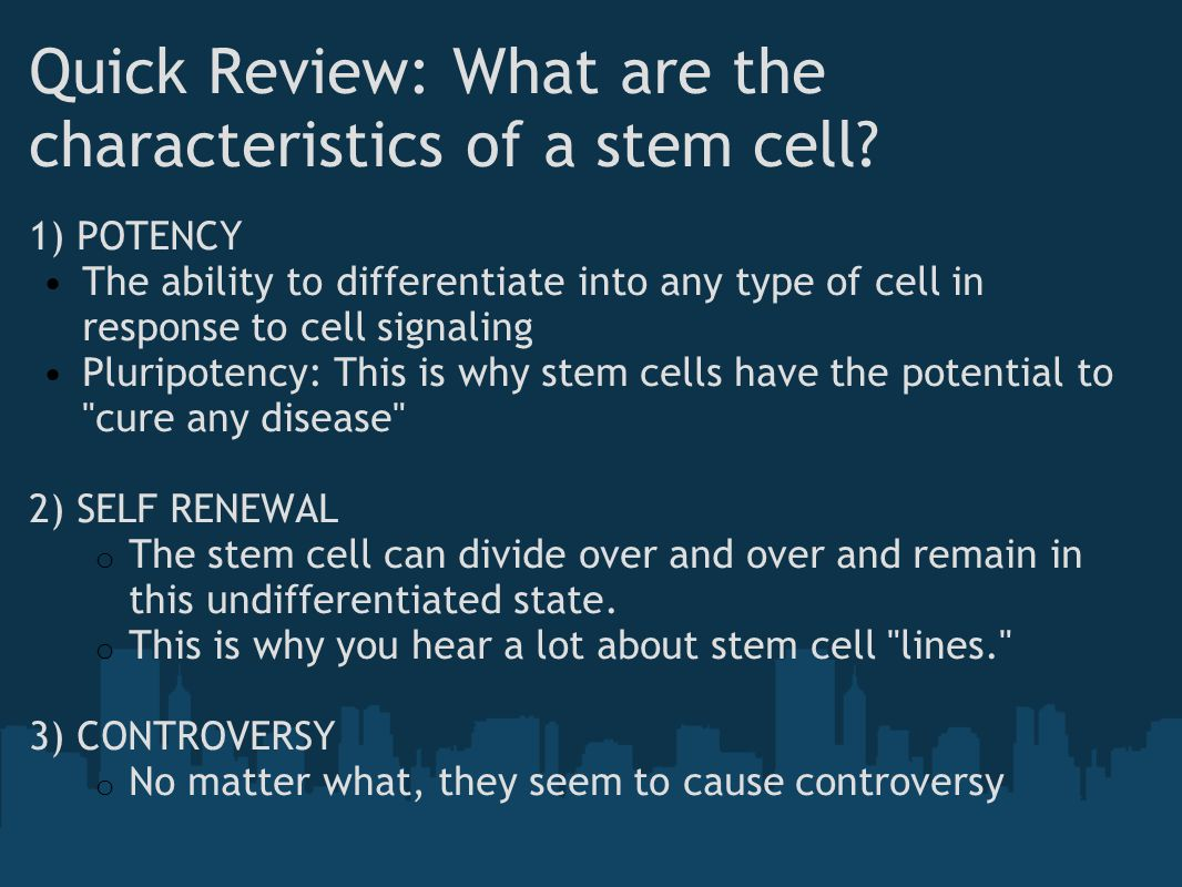 Quick Review: What are the characteristics of a stem cell