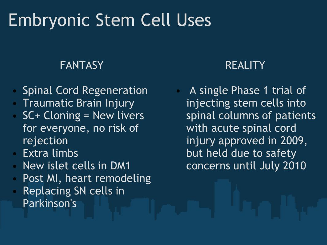 Embryonic Stem Cell Uses