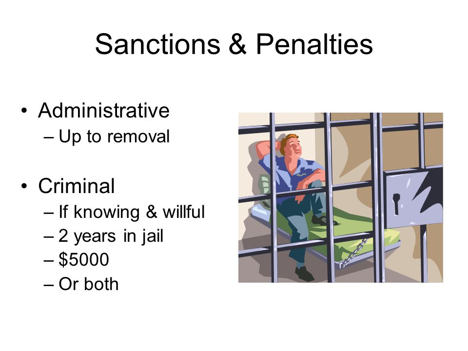 Sanctions & Penalties Administrative Criminal Up to removal