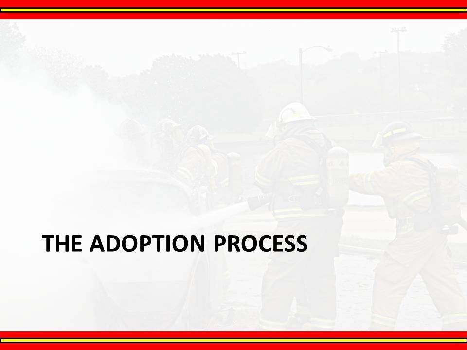 The Adoption Process