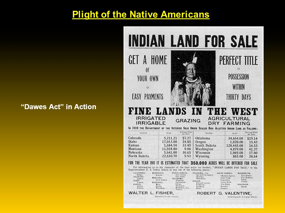 Plight of the Native Americans