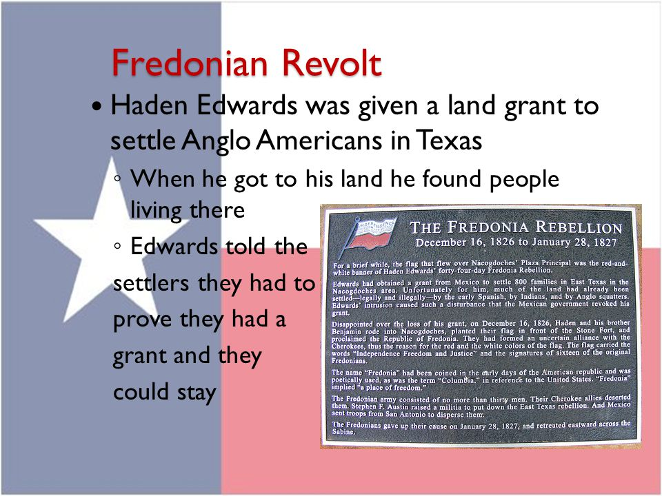 Fredonian Revolt Haden Edwards was given a land grant to settle Anglo Americans in Texas. When he got to his land he found people living there.