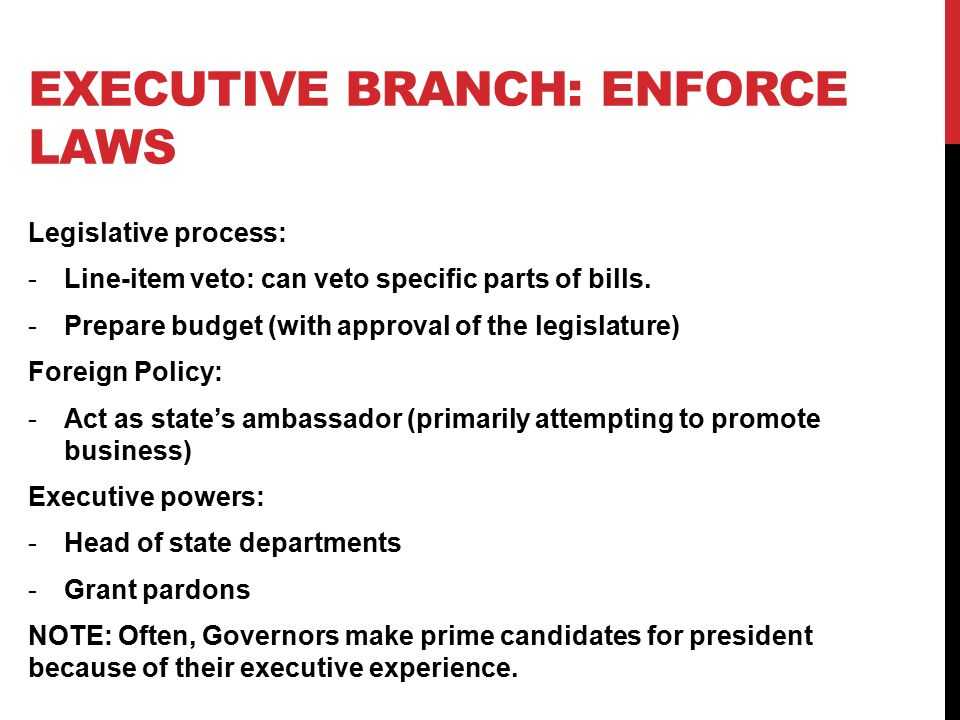 Executive branch: enforce laws