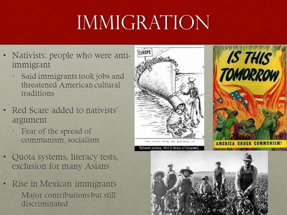 Immigration Nativists: people who were anti- immigrant