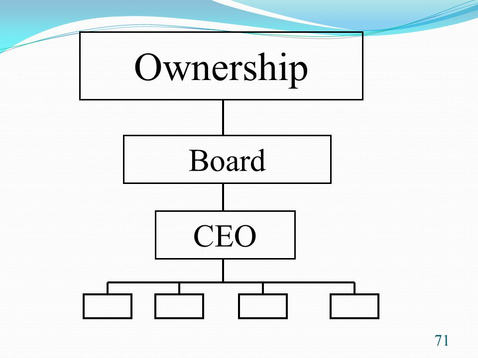 Ownership Board CEO This diagram shows reporting relationships -