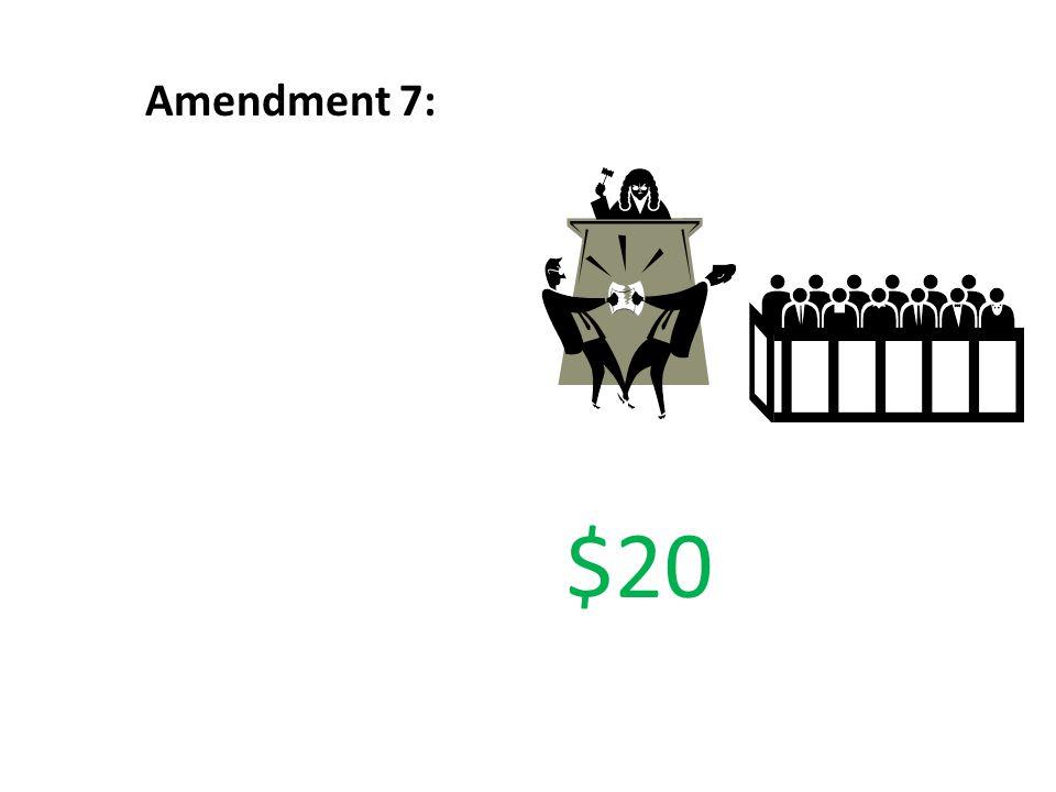 Amendment 7: $20