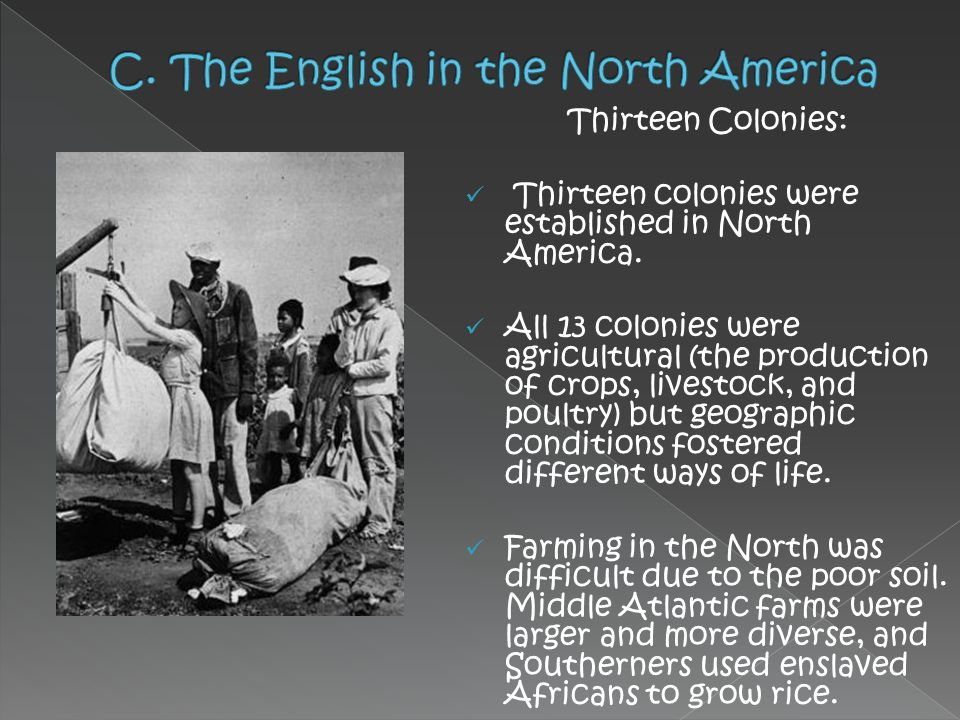 C. The English in the North America