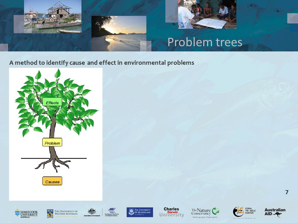 Problem trees A method to identify cause and effect in environmental problems