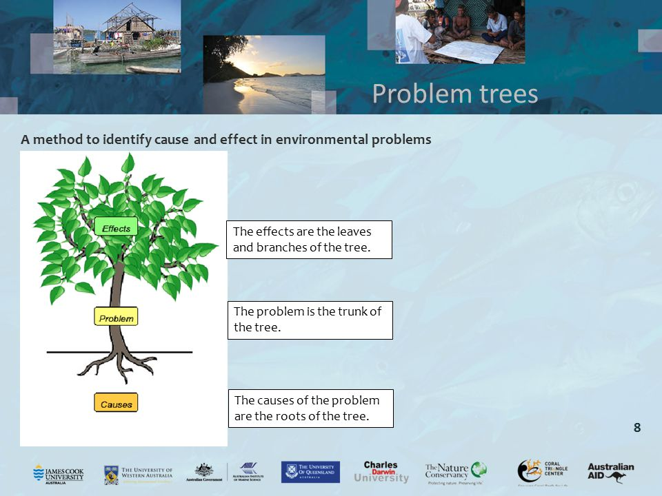 Problem trees A method to identify cause and effect in environmental problems. The effects are the leaves and branches of the tree.