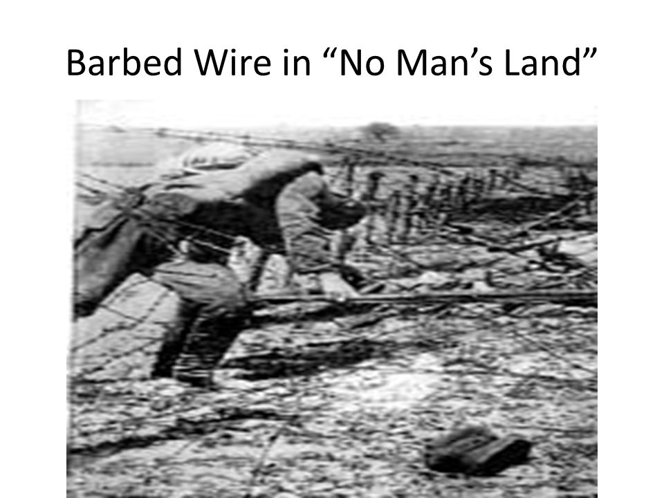 Barbed Wire in No Man's Land