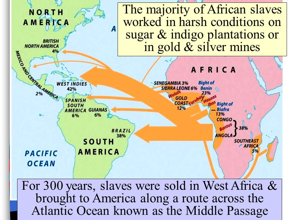 The majority of African slaves worked in harsh conditions on sugar & indigo plantations or in gold & silver mines
