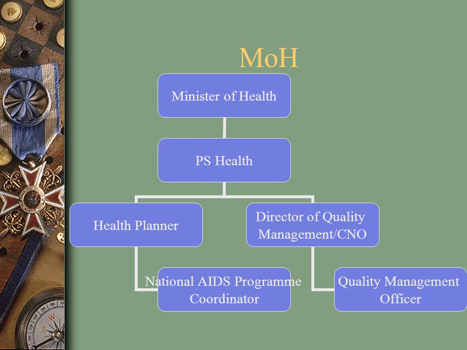 MoH This represents just the health portion of the Ministry of Social Development.