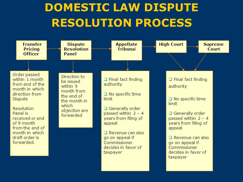 DOMESTIC LAW DISPUTE RESOLUTION PROCESS
