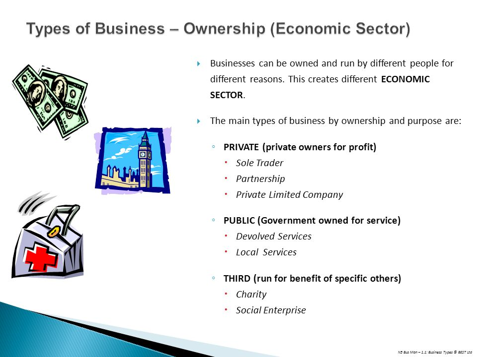 Types of Business – Ownership (Economic Sector)