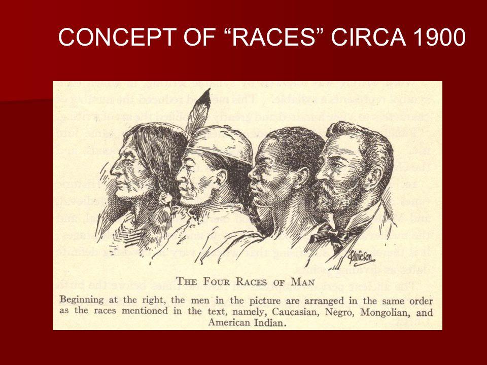 CONCEPT OF RACES CIRCA 1900
