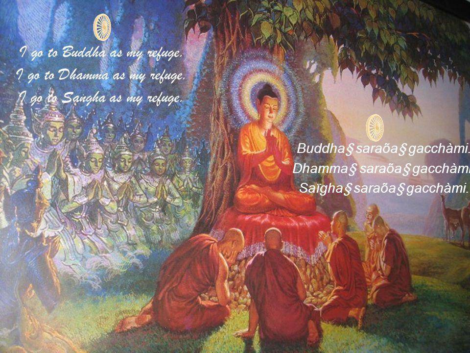 I go to Buddha as my refuge. I go to Dhamma as my refuge.