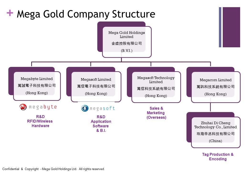 Mega Gold Company Structure