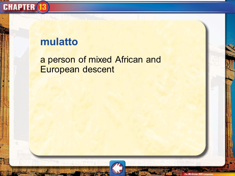 mulatto a person of mixed African and European descent Vocab18