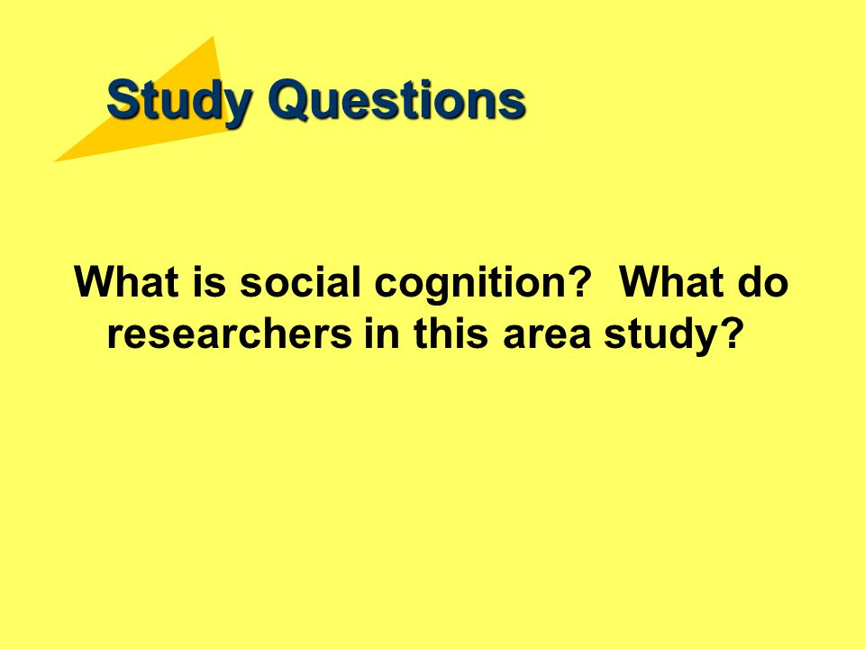Study Questions What is social cognition What do researchers in this area study