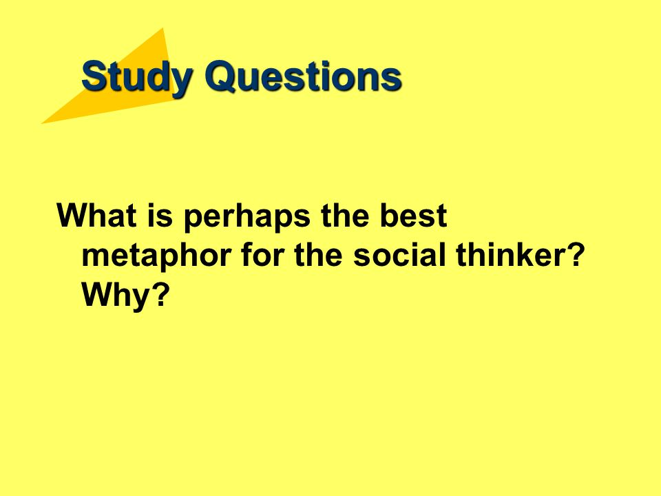 Study Questions What is perhaps the best metaphor for the social thinker Why