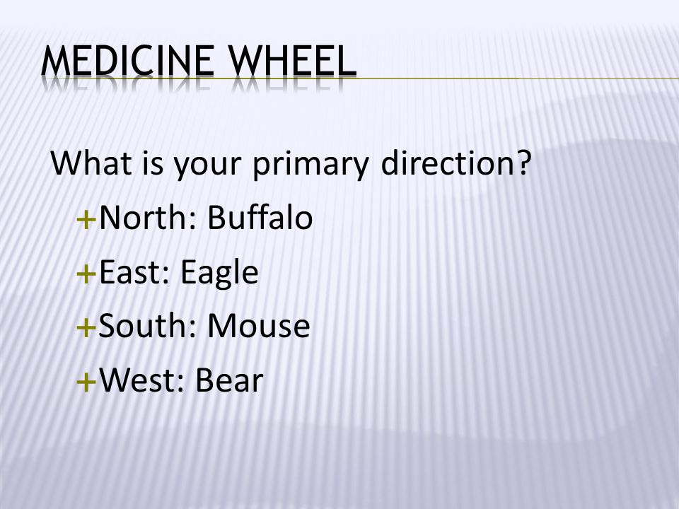 Medicine Wheel What is your primary direction North: Buffalo
