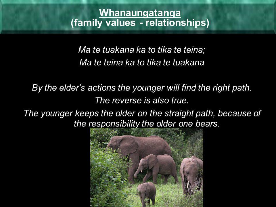 Whanaungatanga (family values - relationships)