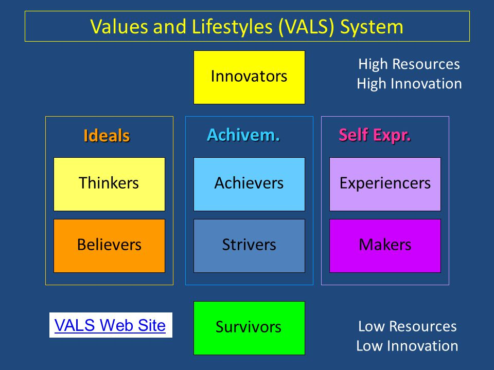Values and Lifestyles (VALS) System
