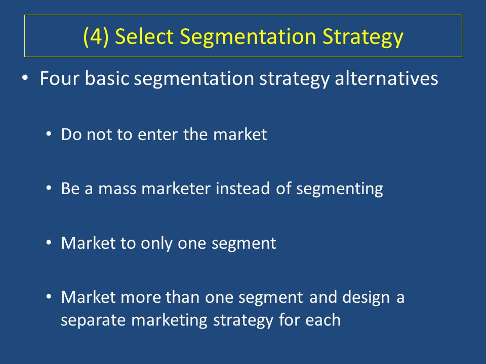 (4) Select Segmentation Strategy