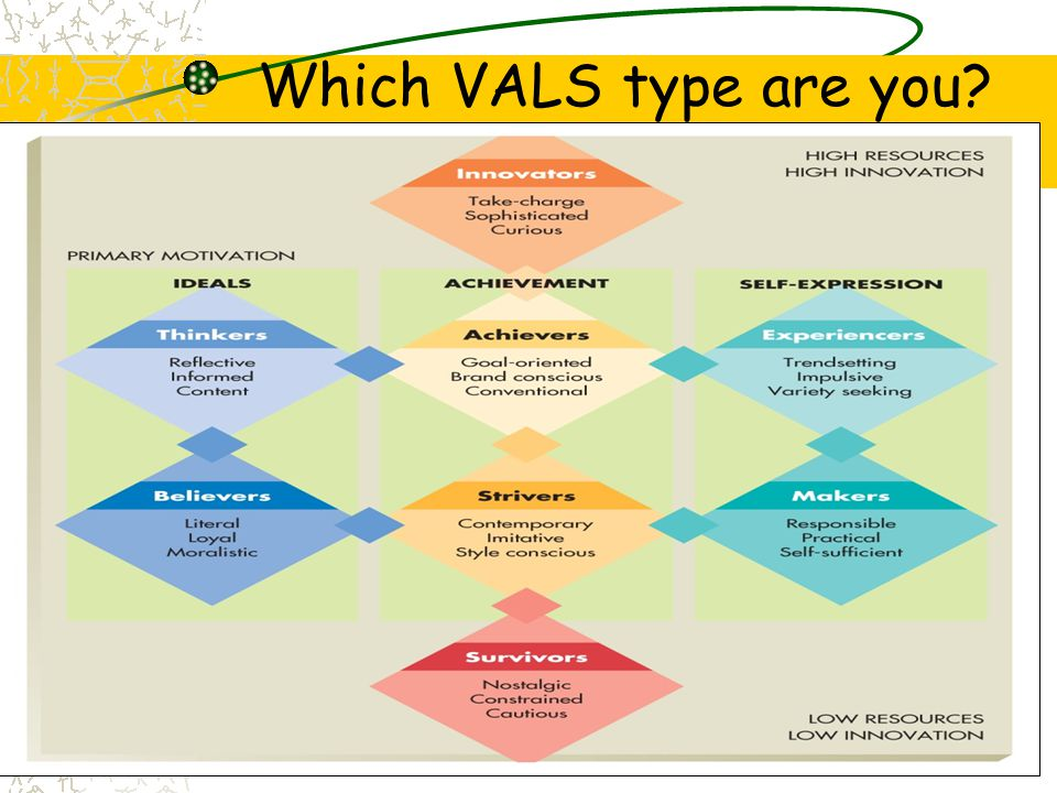 Which VALS type are you