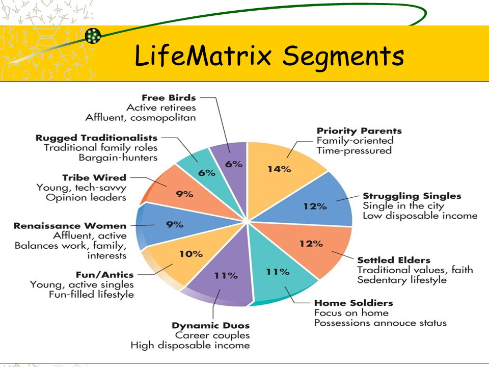 LifeMatrix Segments