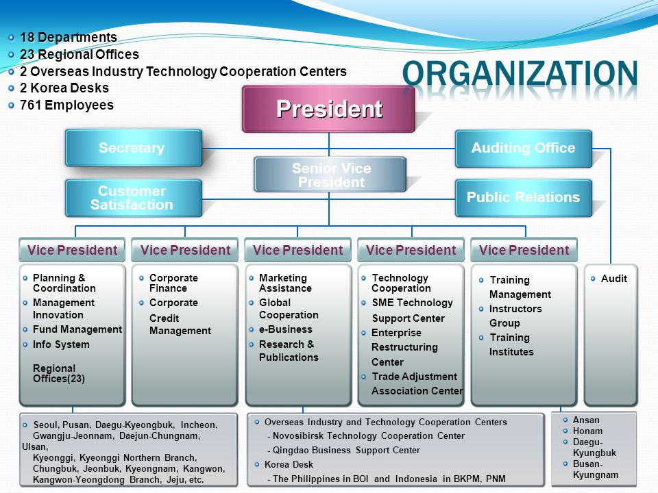 organization President Secretary Auditing Office Senior Vice President