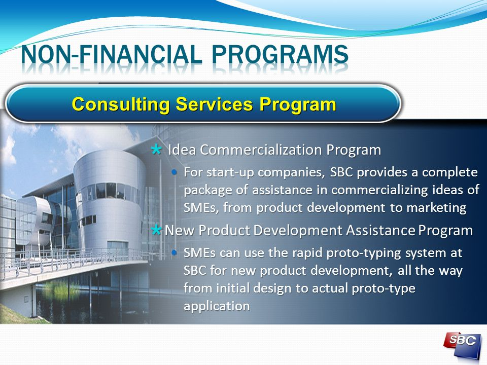 Consulting Services Program