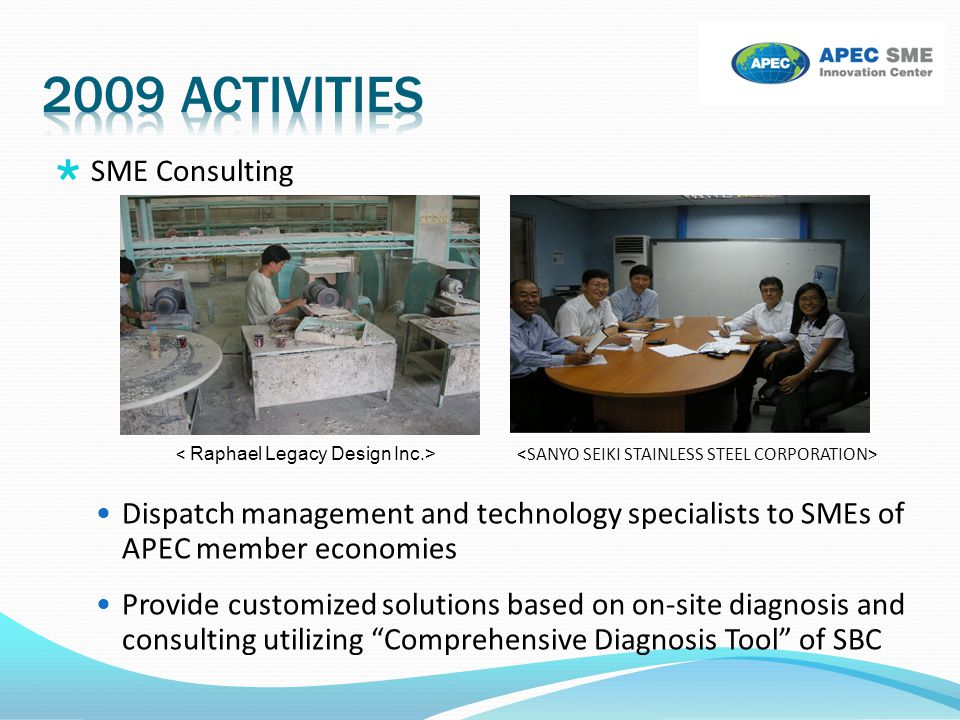 2009 activities SME Consulting