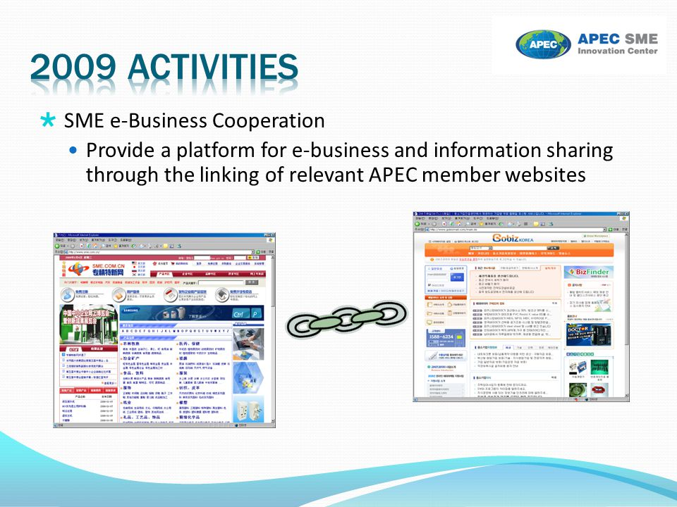 2009 activities SME e-Business Cooperation