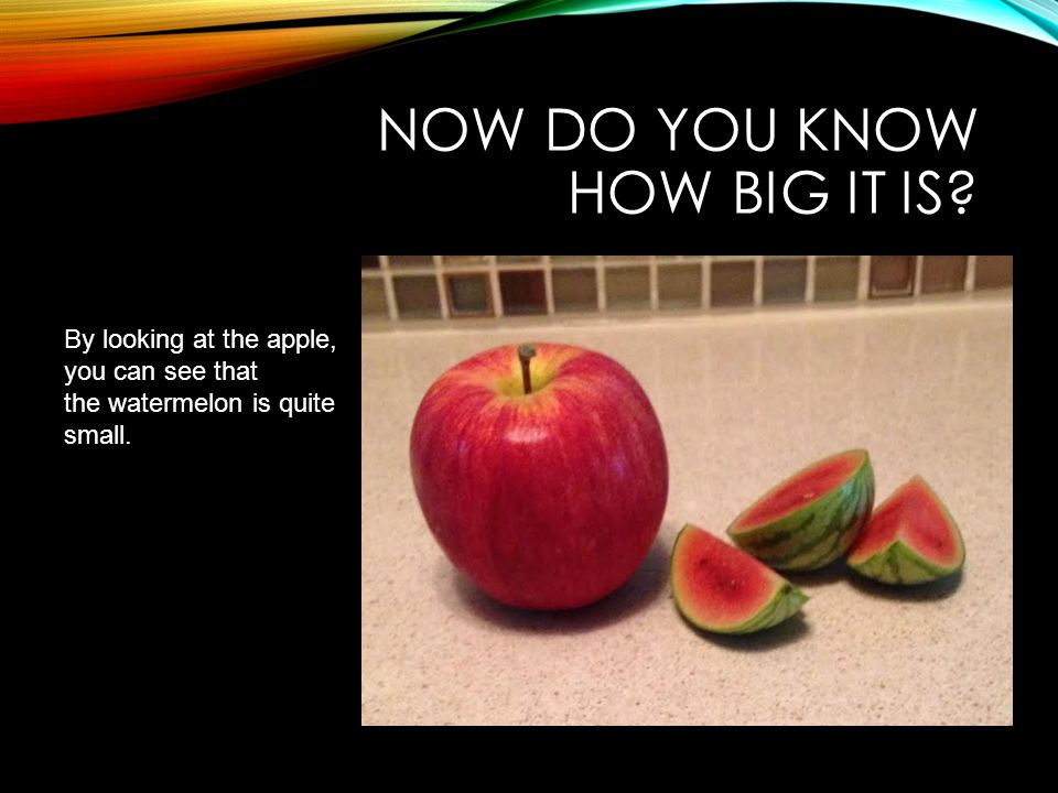 Now do you know how big it is