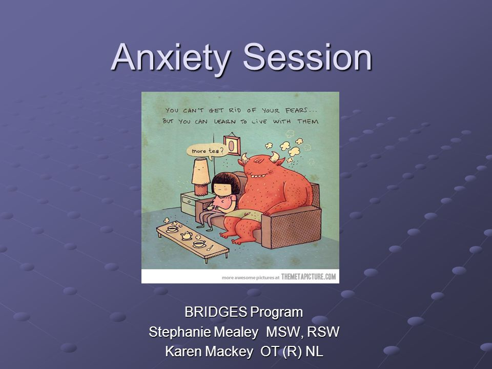 BRIDGES Program Stephanie Mealey MSW, RSW Karen Mackey OT (R) NL