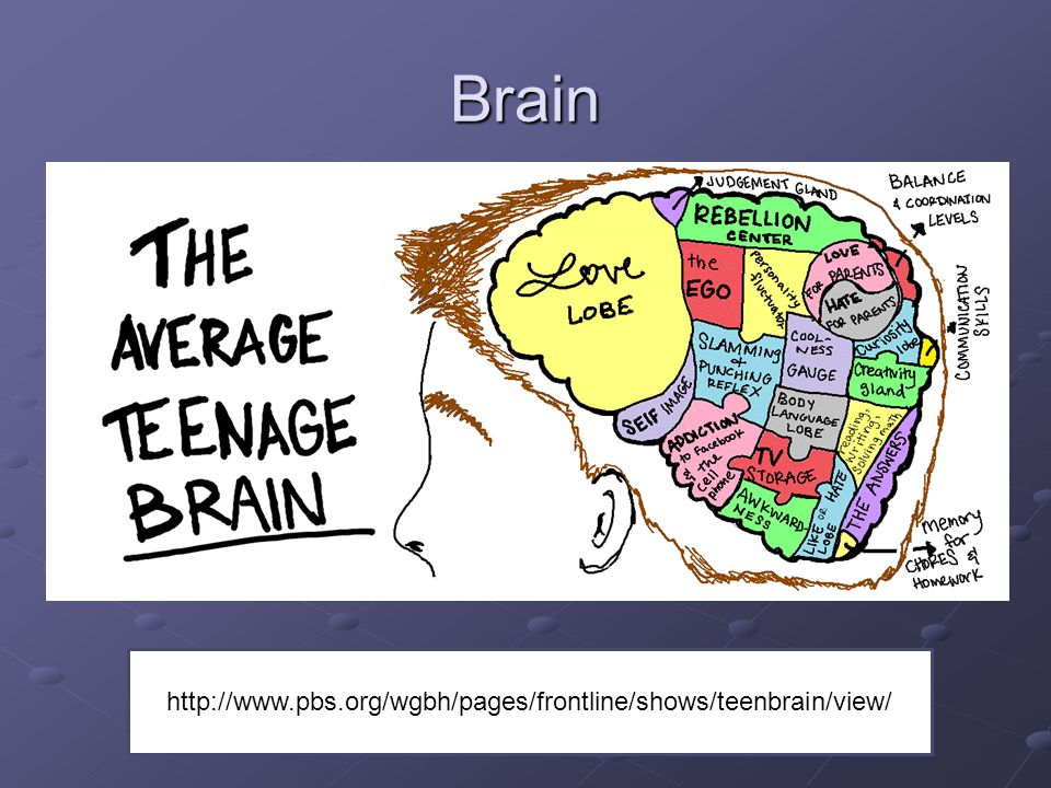 Brain Review and encourage parents to watch the video for extra information.