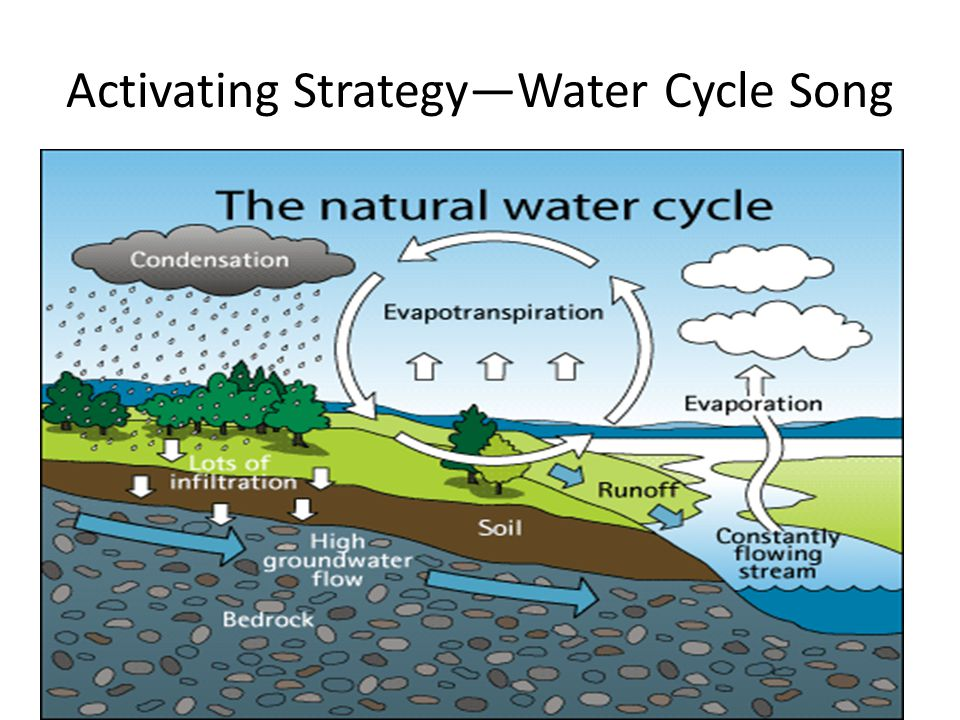 Activating Strategy—Water Cycle Song