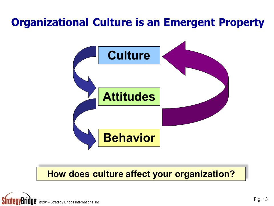 Organizational Culture is an Emergent Property