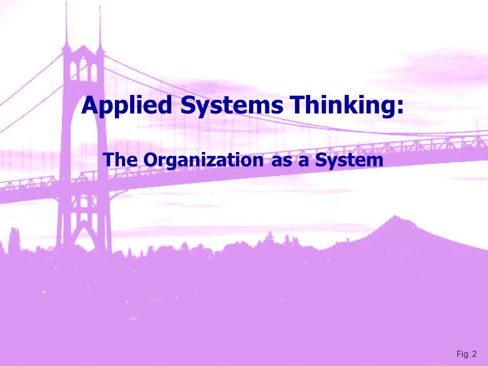 Applied Systems Thinking: The Organization as a System