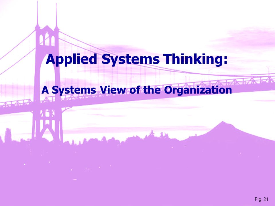 Applied Systems Thinking: A Systems View of the Organization